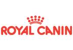Royal Canin, ERP, vállalatirányítás, referencia, Microsoft Dynamics 365