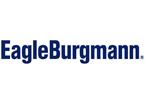 EagleBurgmann Hungaria Kereskedelmi Kft., ERP, vállalatirányítás, referencia, Microsoft Dynamics 365
