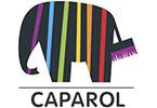 Caparol, ERP, vállalatirányítás, referencia, Microsoft Dynamics 365, NAV, AX